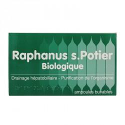 Raphanus S Potier Biologique 12 ampoules x 10ml