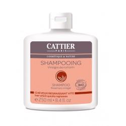 Cattier Shampooing Cheveux Regraissant Vite Vinaigre de Romarin 250 ml