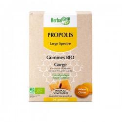 Herbalgem PROPOLIS gommes bio