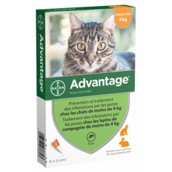 ADVANTAGE chat moins de 4kg 6 pipettes