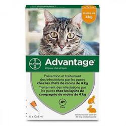 ADVANTAGE chat moins de 4kg 4 pipettes